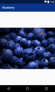 blueberry-app